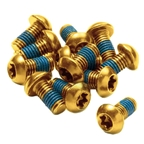 Reverse Disc Rotor Bolts M5x10 12/Pack - Gold