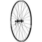Quality Wheels Front Wheel Value Series 700c 100mm QR 32h Shimano / Alex DC19 / DT Stainless Steel All Black