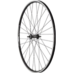 Quality Wheels Front Wheel Value Series 700c 100mm Bolt-on 32h Shimano / Alex DC19 / DT Stainless Steel All Black
