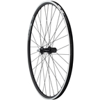 Quality Wheels Road Rear Wheel - 700c Shimano 105 DT R460 32h Black