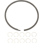 TruVativ HammerSchmidt Planet Gear Retaining Rings, Bag of 10