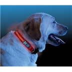 Nite Ize Dawg Collar: Red