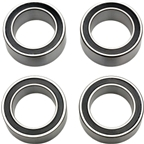 Fulcrum Sealed Bearing for RM0/1/3/5 RM0-010