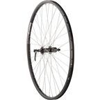 Quality Wheels Rear Wheel Mountain Rim 700c 135mm 36h Alex DH19 Black / Shimano Deore Black / DT Stainless Steel Silver