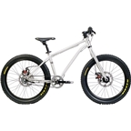 "Early Rider Belter Trail 3 Complete Bike: 20"" Wheels, Silver"