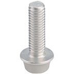 Dimension Silver Anodized Bolts M5x.8 16mm