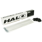 Halo Aura Spoke White 14g - Box/100 264mm