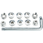 FSA Torx T-30 Alloy Double Chainring Nut/Bolt Set with tool, Silver