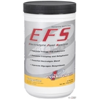 First Endurance EVO1 Recovery Drink Mix: Chocolate, 15 single Serving Packets
