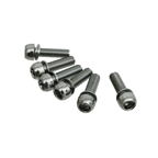 Straitline Components Replacement Stem Bolts (6pc)
