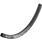 DT Swiss RR 421 700c Tubeless-Ready Road Disc Rim: 32h, Black, Includes Squorx Nipples and Rim Washers