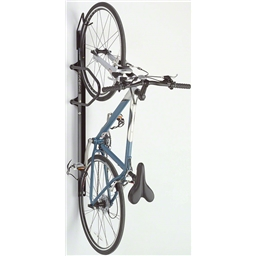 Saris 6006 Lockable Bike Trac Rack, Black