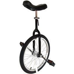 """Bor Yueh By-904a 24"""" Alloy Wheel Unicycle Black"""